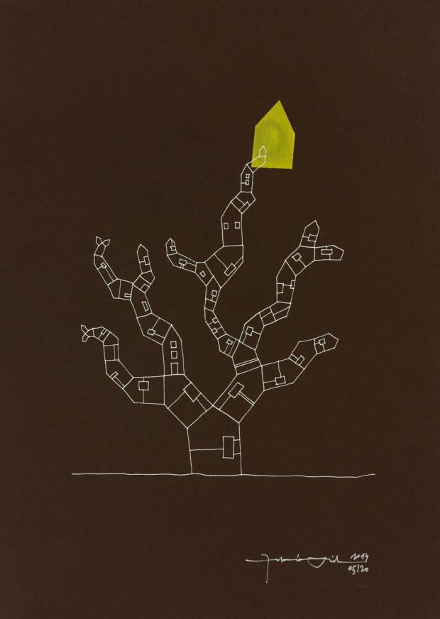 Casa albero 005